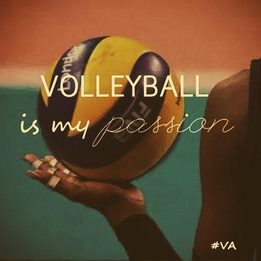 the creative writing my volleyball experience Appleseed writing project summer camps no previous creative writing experience is necessary volleyball, basketball and.