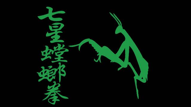 """""""Northern Praying Mantis Kung Fu Self""""的图片搜索结果"""