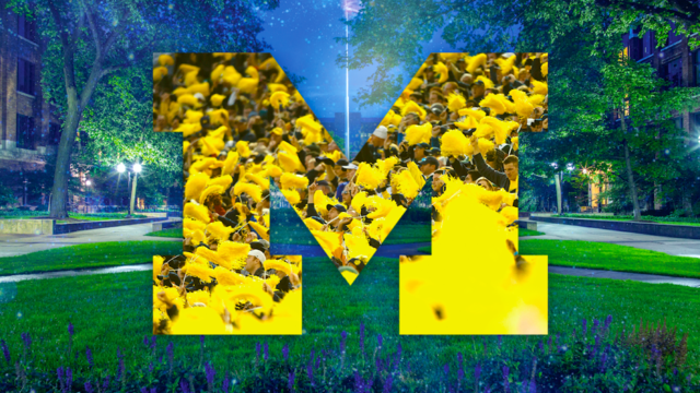 What are my chances after being deferred from University of Michigan?