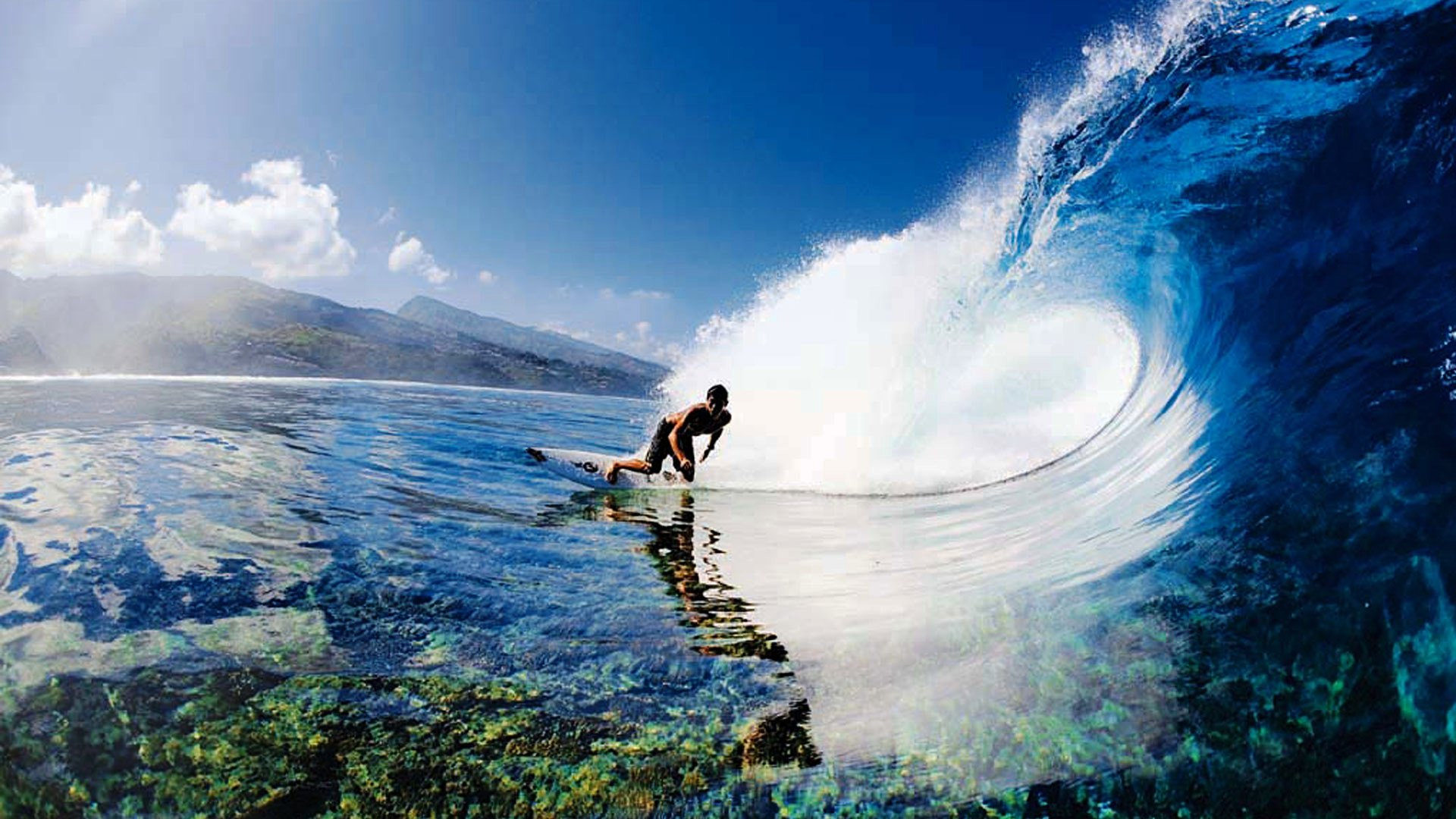 1000 Images About Surfing On Pinterest Surf Surfers