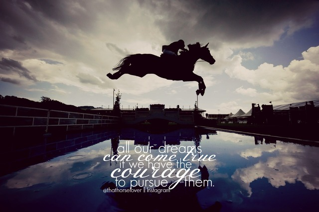 equestrian quotes tumblr - photo #37