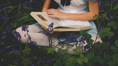 Resultado de imagen para tumblr alice in wonderland