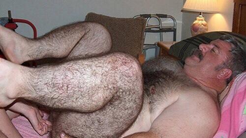 гей секс фото медведи
