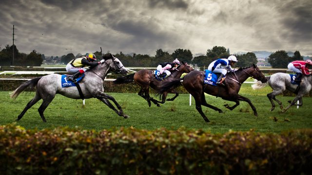 Znalezione obrazy dla zapytania tumblr horse racing