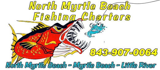 Myrtle beach south carolina nude
