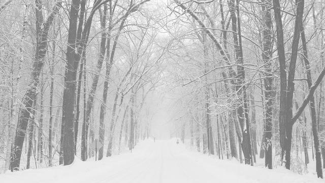 Resultado de imagem para inverno tumblr