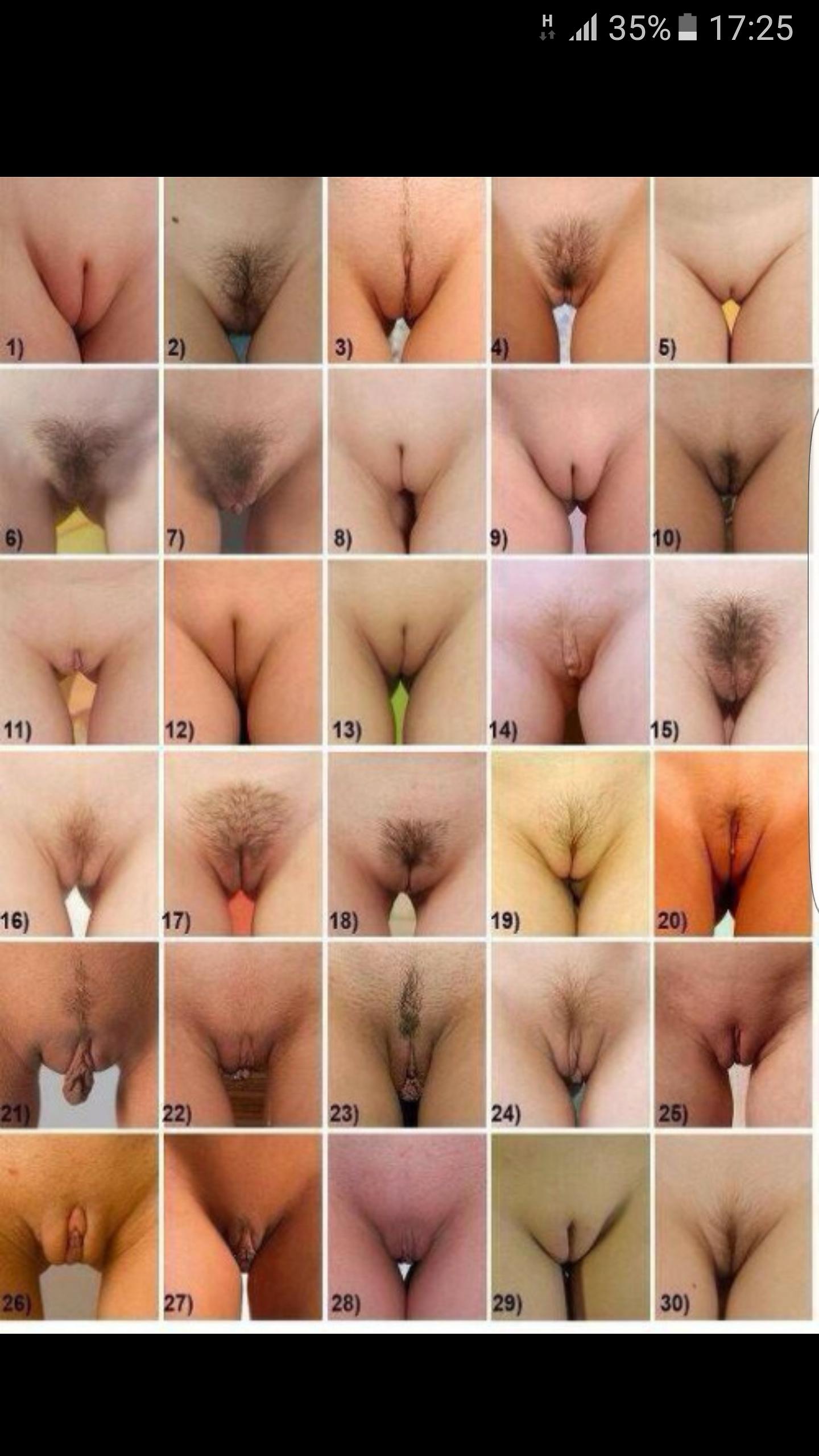 Порно фото женских писек пизды вагин  Смотреть