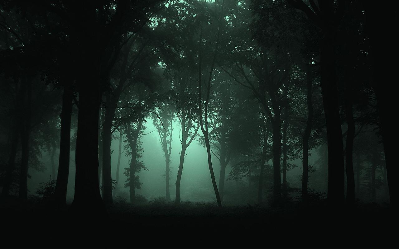 Dark forest joker sex picture
