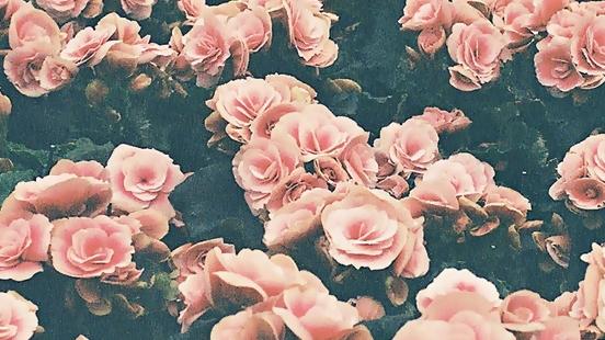 Valorize sua mae tumblr wallpaper - shimon moore wallpaper for ipad