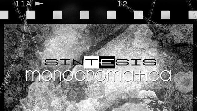 síntesis monocromática blog