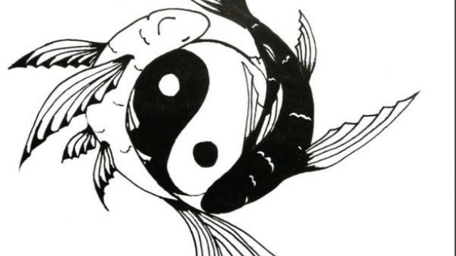 yang yin | Tumblr