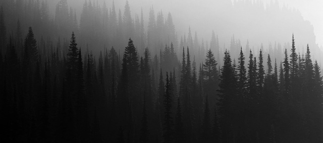 Image result for spooky mountains tumblr