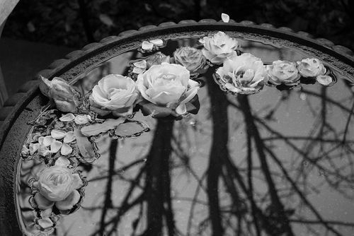Αποτέλεσμα εικόνας για goth tumblr
