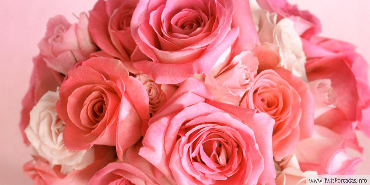 Imagenes Bonitas Con Flores Y Plantas 2ª Parte Cerrado Página 52
