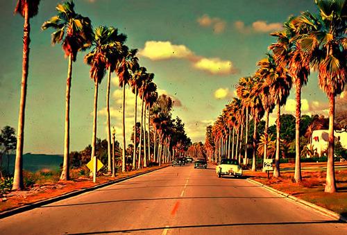 Risultati immagini per california tumblr