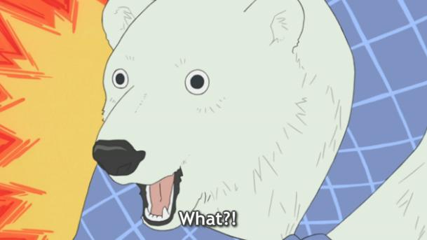 Polar Bear Cafe Polar Bear Café