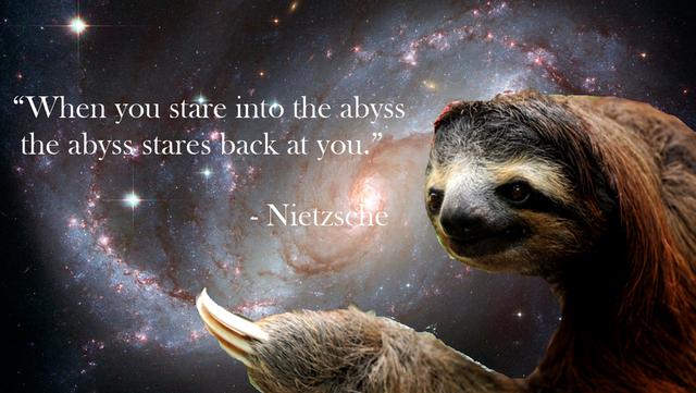 sloths in space tumblr